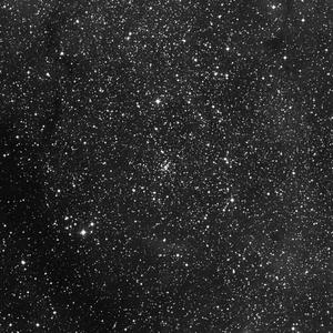 DSS image of IC1310