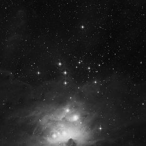 DSS image of NGC1981