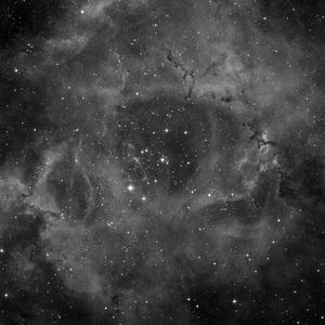DSS image of NGC2244